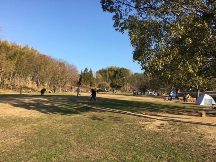 トンボ池公園の広場