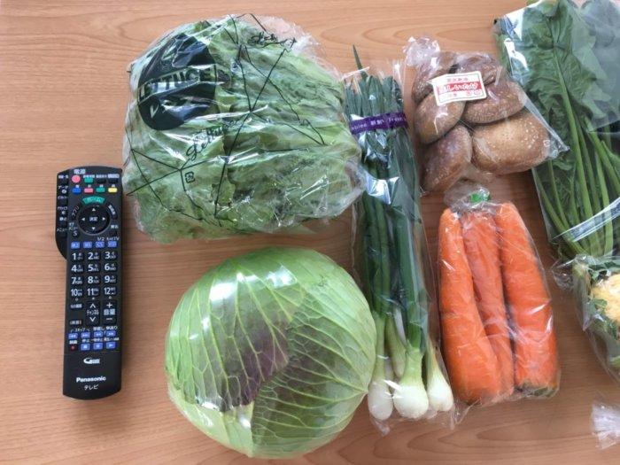 ふるさと納税大阪府泉佐野市泉州野菜セット(小)リモコンと大きさを比べる