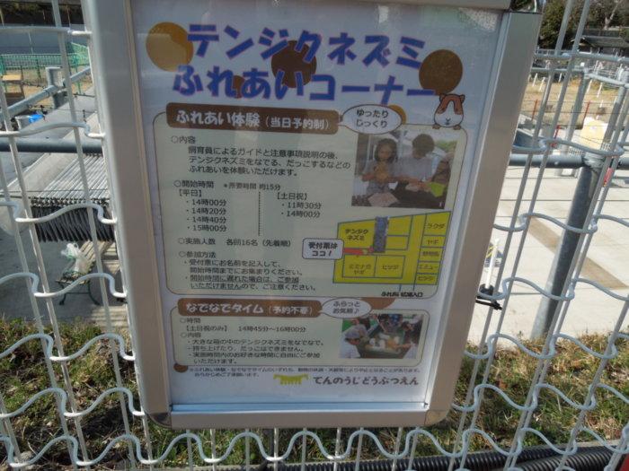 天王寺動物園、ふれあい広場やイベントの予約時間