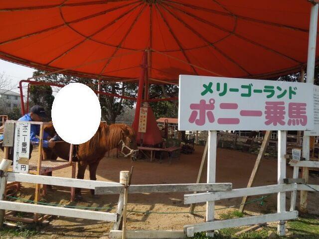 淡路島牧場ポニーのメリーゴーランド