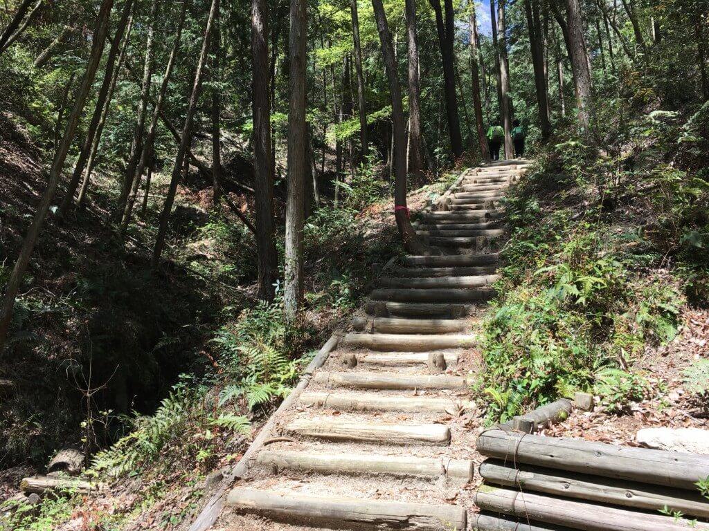 星のブランコのハイキング道