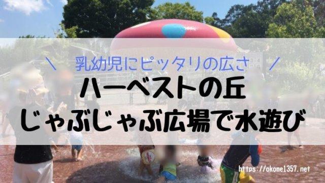 ハーベストの丘水遊び(じゃぶじゃぶ広場)アイキャッチ