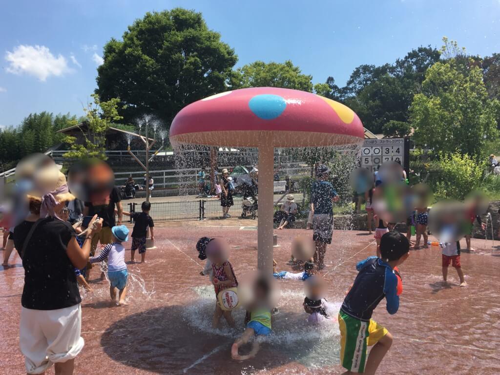 ハーベストの丘水遊び(じゃぶじゃぶ広場)乳幼児向け