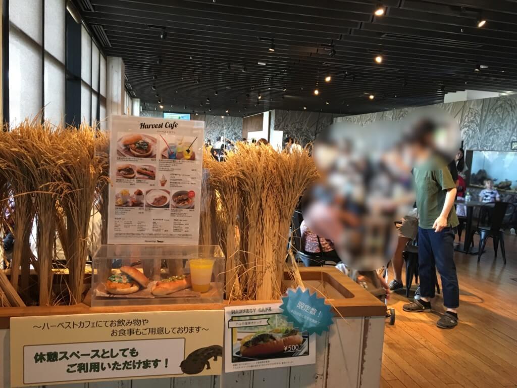 京都水族館 ハーベストカフェの外観