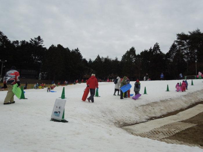 あそびばす雪遊びツアー六甲山スノーパークでソリ