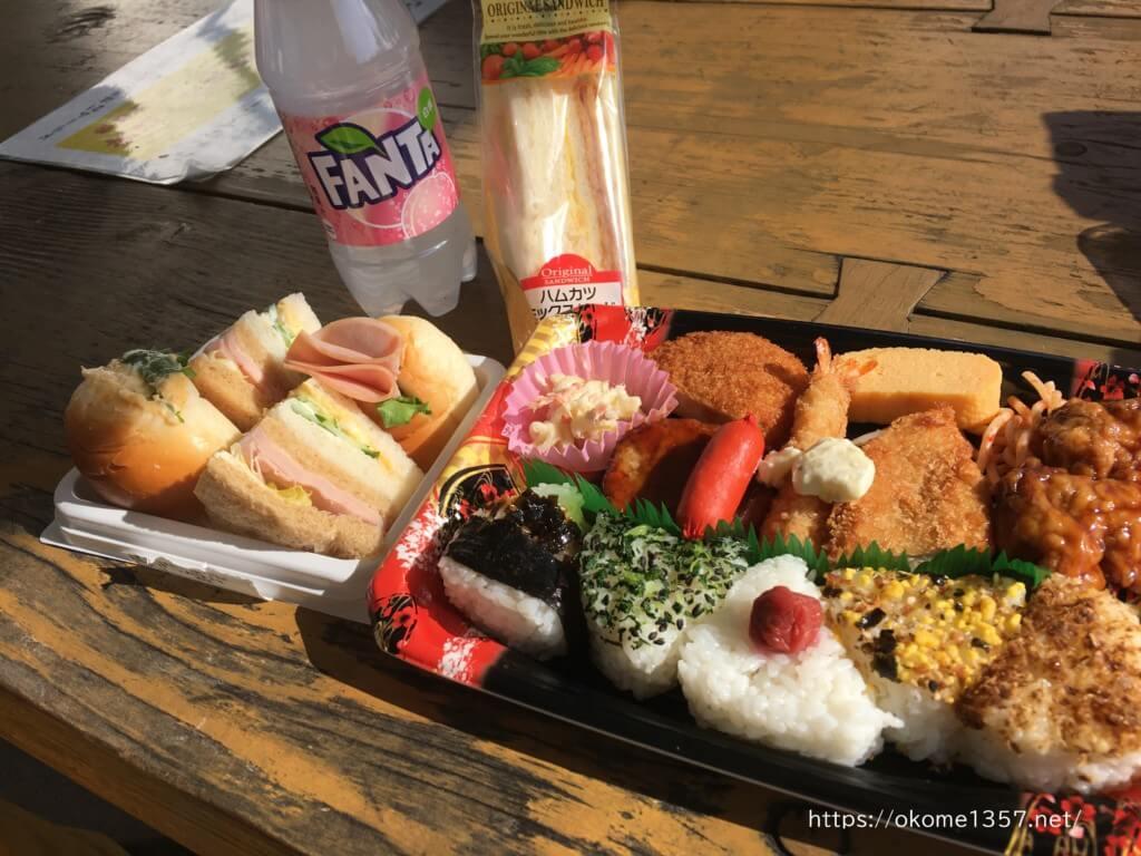 花園中央公園でのランチは駅前のお弁当