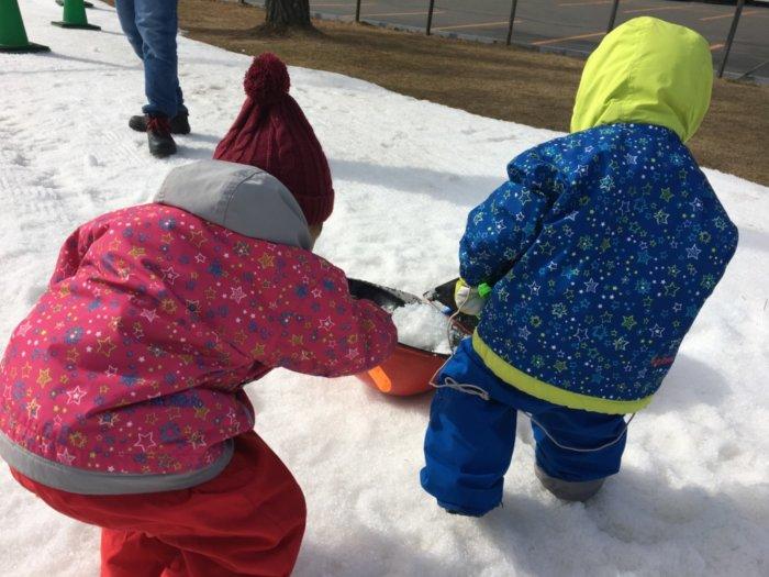 あそびばす雪遊びツアー六甲山スノーパークで雪遊び