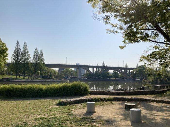 城北公園の池