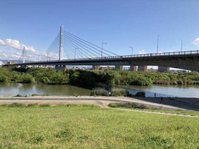 城北公園杉横の淀川
