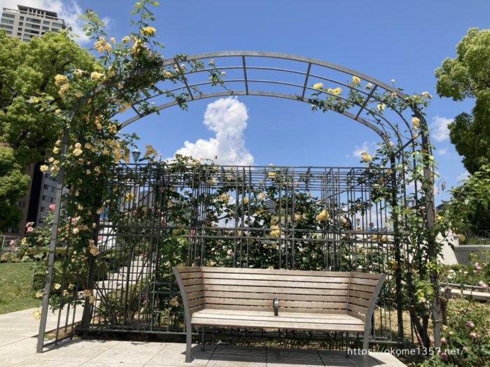 中之島バラ園のバラに囲まれたベンチ